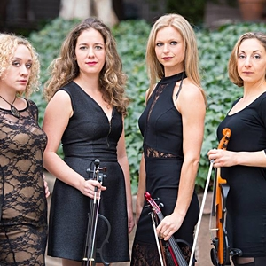 Eclecta Quartet image
