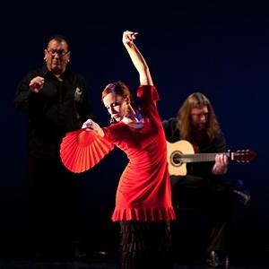 Caminos Flamencos image