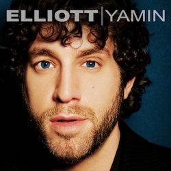 Elliott Yamin image