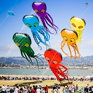 Kite Flying & Activities image