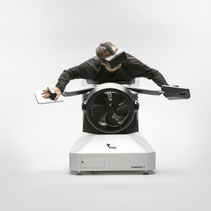 Birdly VR image