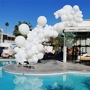 Organic Balloon Decor image