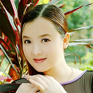 Guzheng Fusion image