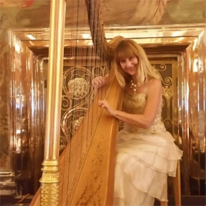 Katrina Saroyan - Harp, Violin, and Accordion image