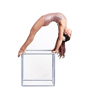Christine Lee - Contortion & Aerial image