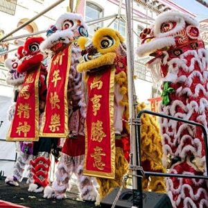 Chinese Lion Dancers image