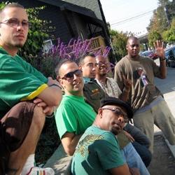 Jungle Shack image