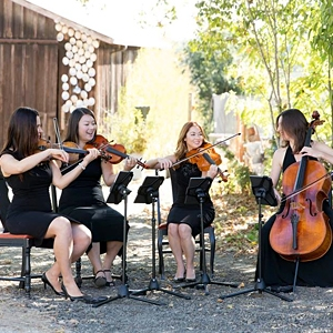 Bellarosa String Quartet image