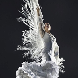 La Tania Baile Flamenco image
